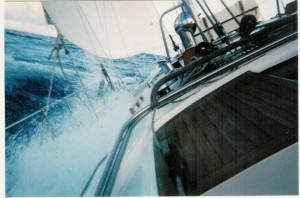 Bermuda race